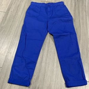 Gap NWT Royal Blue Cotton Pants size 14